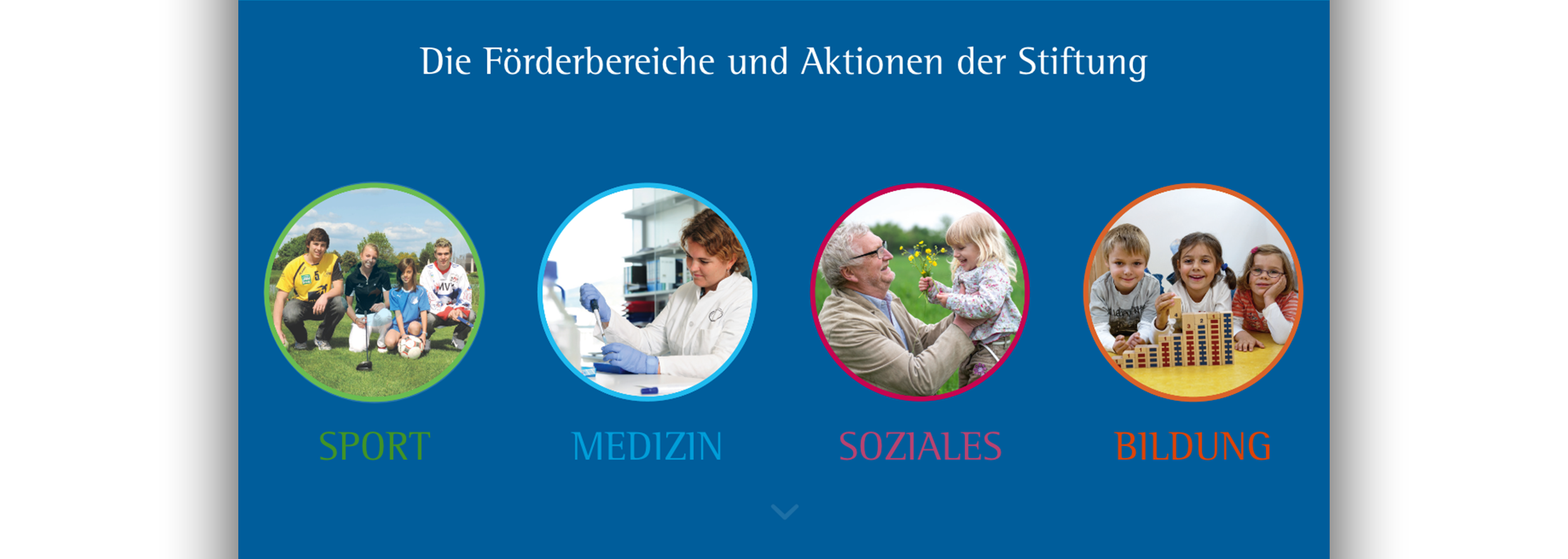Website »20 Dietmar Hopp Stiftung«