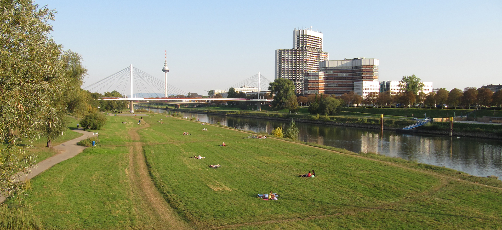 Mannheim Neckarwiese